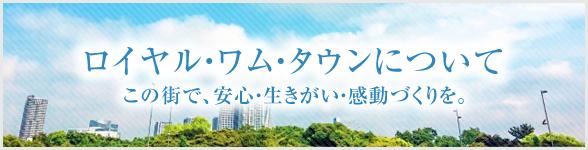 川島ロイヤル・ワム・タウンについて